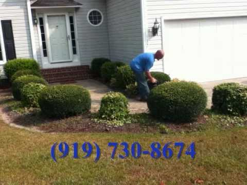 landscaping |(919)730-8674 |Clayton NC |27520 | landscape design | senior discount | Johnston County