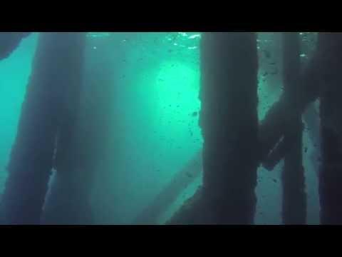 Rig Dive