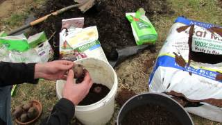 How to Start Grocery Store Potatoes in 5 Gallon Buckets: Easy! - MFG 2014