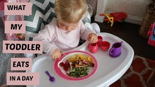 WHAT MY TODDLER EATS IN A DAY | AUGUST 2017 | DAISY BAILEY