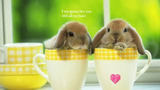Love You With All My Heart - Sara Evans (with lyrics)