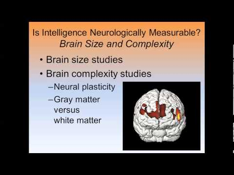 Emotional Intelligence and Brain Size 2