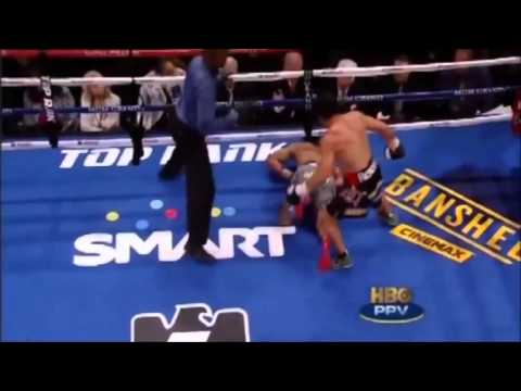 Epic Boxing When Legends Fall