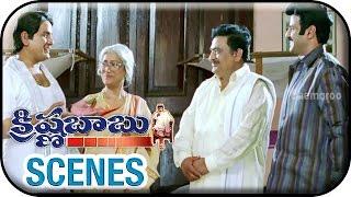 Onamalu - Krishna Babu Telugu Movie Scenes   Balakrishna Funny Conversation With AVS    Balakrishna   Raasi