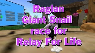 Giant snail race 521 18 June 23 RFL RAGLAN  nature