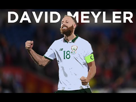 INTERVIEW | David Meyler looks back on his Ireland career