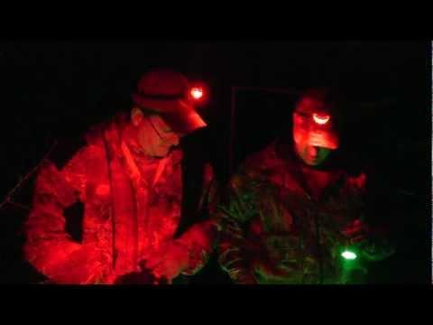 Hog. Predator. Varmint Night Hunting Light Wicked Lights