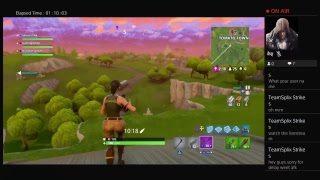 Another  Fortnite Gameplay