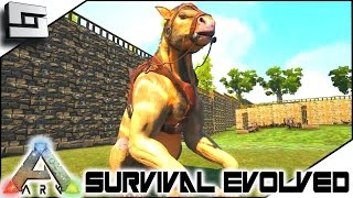 ARK: Survival Evolved - CHALICOTHERIUM TAMING! S4E55 ( The Center Map Gameplay )