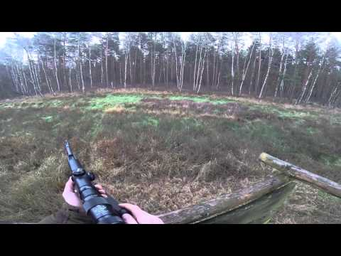Driven Wild Boar Hunting 2014 - Germany video