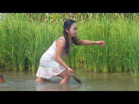 Amazing fishing at Battambang - people fishing in Cambodia - How to Catches fish (Part 291) #1