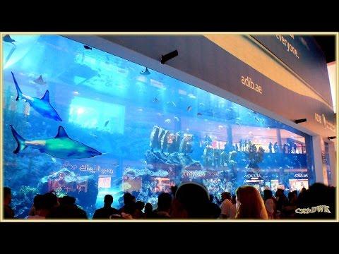 DUBAI Shopping Event,  The World Mega Mall (Waterfall, Aquarium, Ice Stadium..)