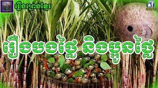 រឿងព្រេងខ្មែរ-រឿងបងថ្លៃ និងប្អូនថ្លៃ និងរឿងចៅផ្កាប់ត្រឡោក Khmer Legend