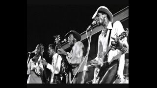 Watch Chambers Brothers I Cant Turn You Loose video