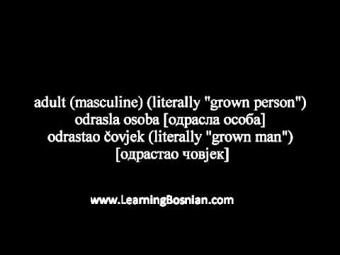 Learn Bosnian - some common words in Bosnian