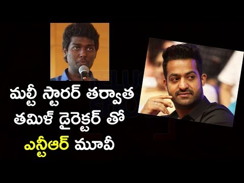 Jr NTR Next Movie With Tamil Director Atlee Kumar - Telugu Shots