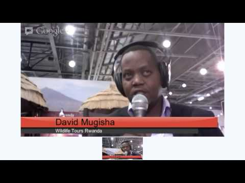 World Travel Mart London Wildlife Tours Rwanda
