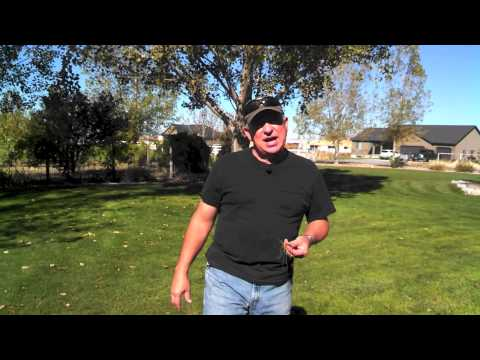 how to aerate lawn manually