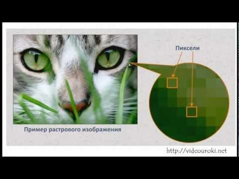 урок растровая и векторная графика: