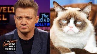 Jeremy Renner Is Grumpy Cat