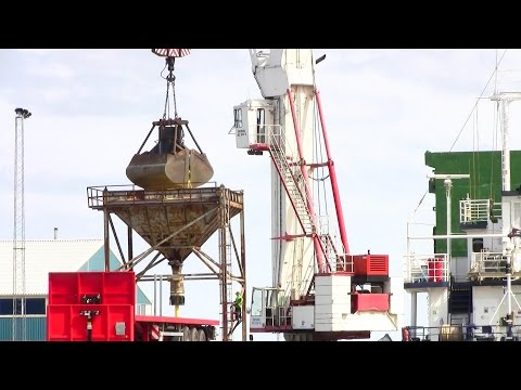 Demag MC900Q Harbour Crane Unloading A Ship