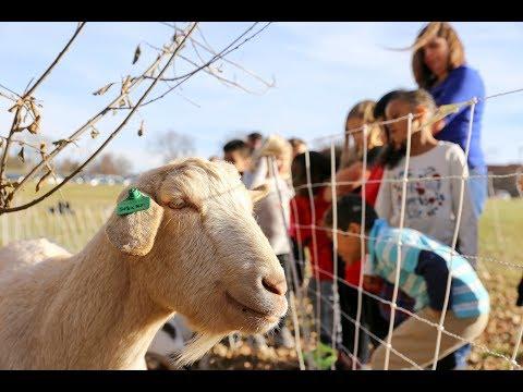 Oak Grove's new 'kids' at school