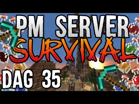 PM Server Survival: Dag 35