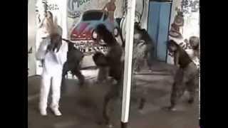 Faya Gan  Sort wan foe den Surinam DAT   YouTube
