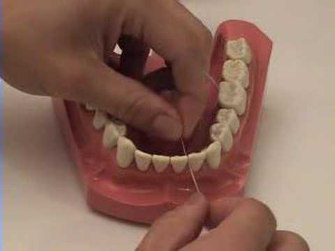 Smile Brush Floss - Flossing Tutorial