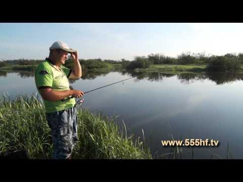 ловля рыбы в могилевской области