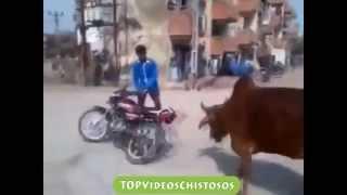 Caidas y videos graciosos 2014 Super caidas chistosas - Chistosos - Caidas Graciosas de Risa 2014