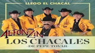 Los Chacales de Pepe Tovar - Los Culpables 2015