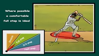 How to cricket, batting tips, 7 ways to increase power