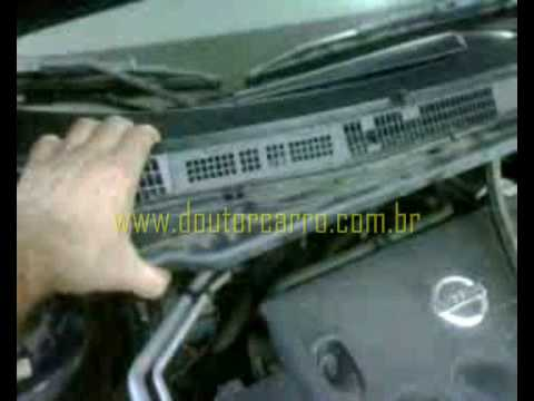 Nissan Terrano Paint Code Location