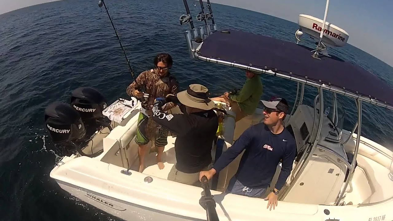 Deep sea fishing in gulf of mexico pcb youtube for Deep sea fishing gulf of mexico
