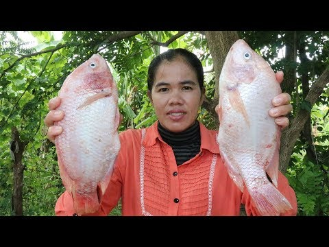 Amazing Cooking Red Fish With vermicelli  Delicious Recipe - Red Fish Recipes - Primitive Technology