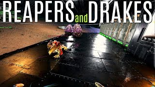 THE DESCENT FOR ROCK DRAKES and Reaper King! - Official 6 Man Tribes - ARK Survival