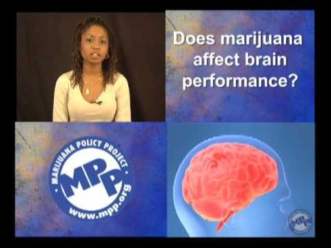 Marijuana Two-Minute Truths: Marijuana and the Brain (MPP-TV)