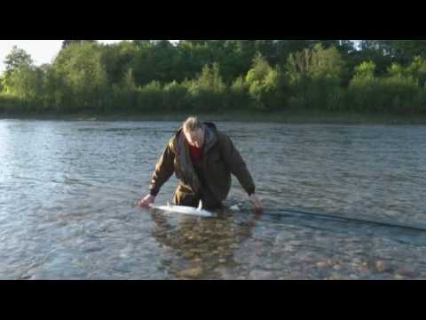 Pelle Klippinge and Manfred Raguse on the Gaula Vol. 1 - Norwegian Flyfishers Club