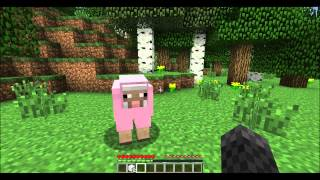 Minecraft - How to tame a sheep!