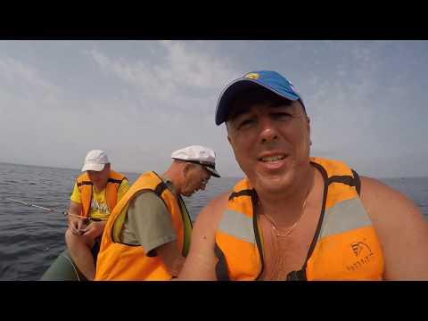 ловля лакедры во владивостоке 2016