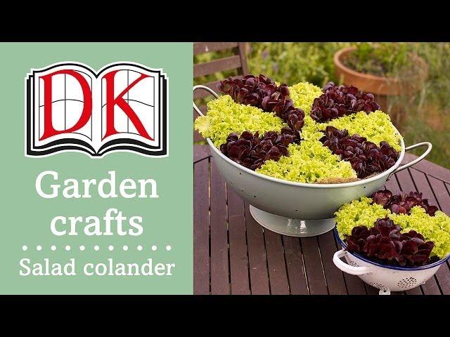 Garden Ideas: Grow Your Own Salad Colander