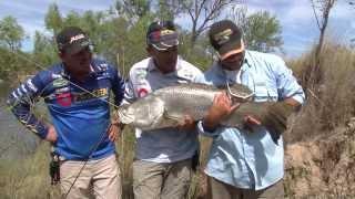 download lagu Fishing For Barramundi  Live Bait - Reel Action gratis