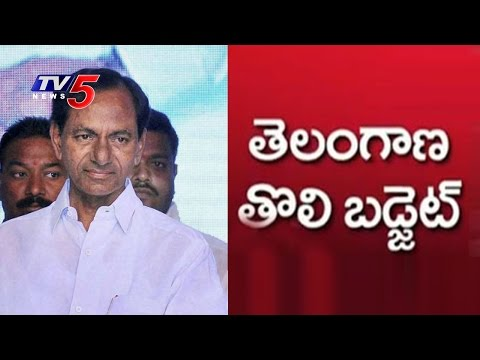 KCR Gives A Detailed Explanation Of T- Budget : TV5 News