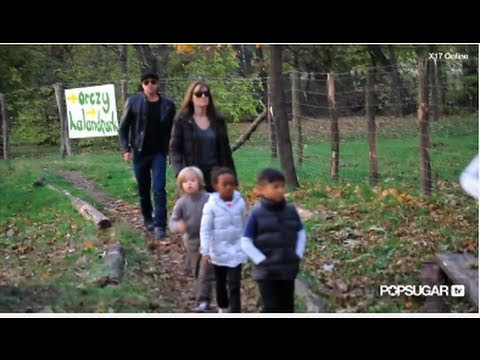 Brad Pitt, Angelina Jolie & Kids Play at the Park!