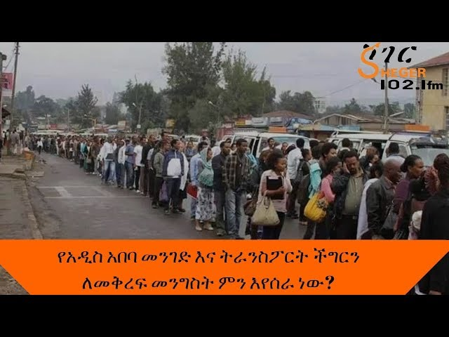 What is the government doing to alleviate the problem of Addis Abeba Road and Transport?