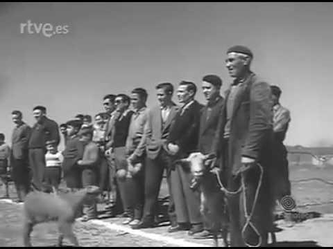 Puertollano en 1958