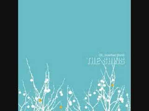 Shins - Past And Pending