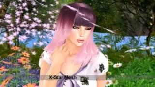 Amore X Star Inc