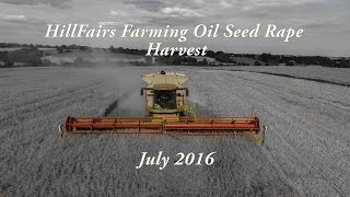 Oil Seed Rape Harvest - July 2016